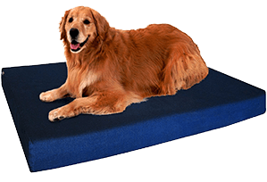 Dogbed4less Orthopedic Memory Foam