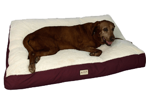 Armarkat Mat Pet Bed