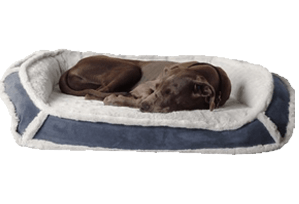k9 ballistics luxury small dog bed review
