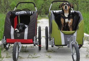 DoggyRide novel dog Jogger Stroller review